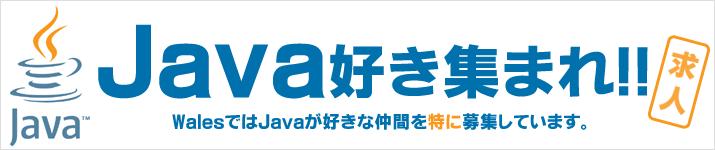 Java,VB.net 募集 求人 札幌 東京